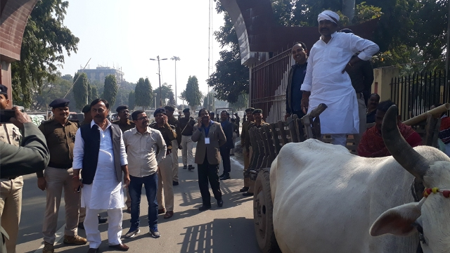 To highlight farmers' issues, Cong lawmakers reach Bihar House on bullock cart