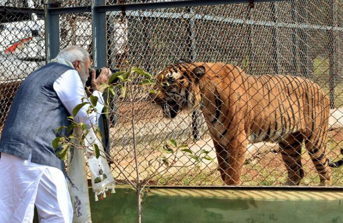 Indian Prime Minister Narendra Modi tries his hands at wildlife photography!