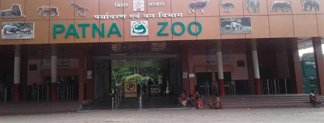 Patna zoo closed after six peacocks die from H5N1 virus