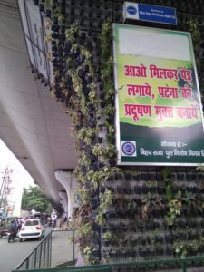 Patna turns to vertical gardens to fight severe air pollution