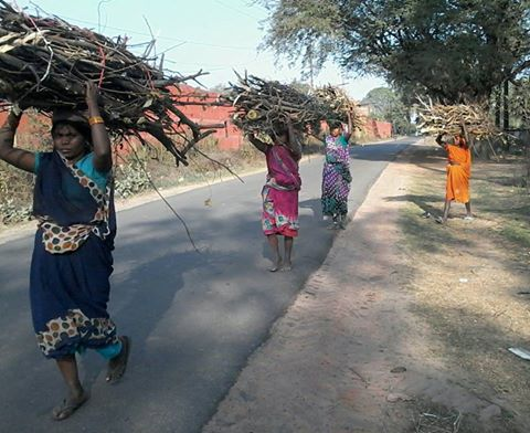 Bihar's poverty rate reduced by 20 percent in past one decade: Survey
