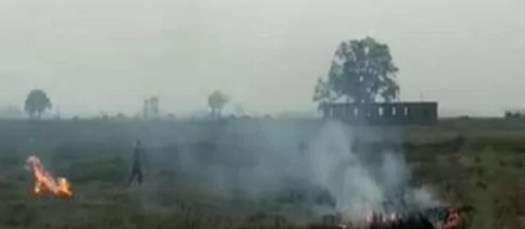 stubble burning in bihar, stubble burning case Bihar, case registered against farmers burning stubble in Bihar, case crop residue burning bihar, case stubble burning bihar Rohtas, no stubble burning oath school children Bihar