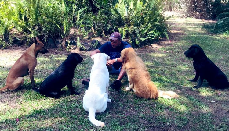 Ravi Shastri, dog meet, social distancing huddle, Indian cricket, lockdown