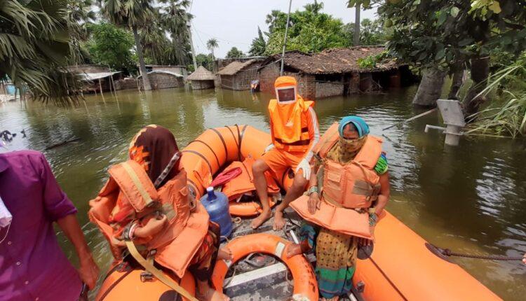 NDRF, Bihar floods, rescue operation, Bihar, Bihar News,