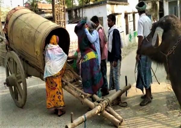 delivery patient, pregannt woman, buffalo cart, Katihar, bihar, MMR,Maternal Mortality Ratio