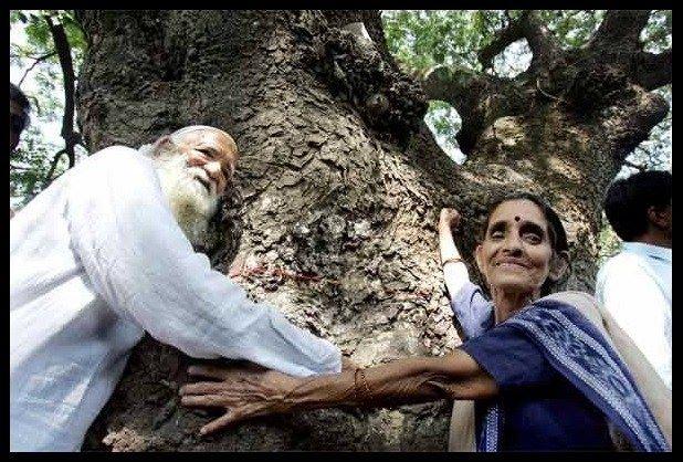 sundarlal bahuguna, chipko movement, Rishikesh, Uttarakhand,