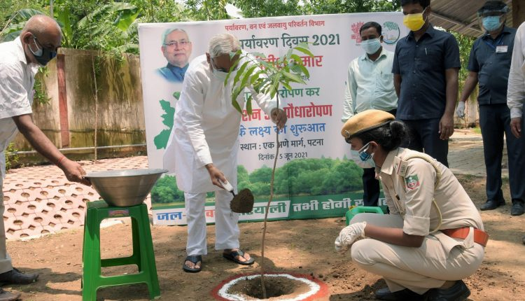 plantation, green cover, bihar, Nitish Kumar, bihar green cover, Bihar, World Environment Day